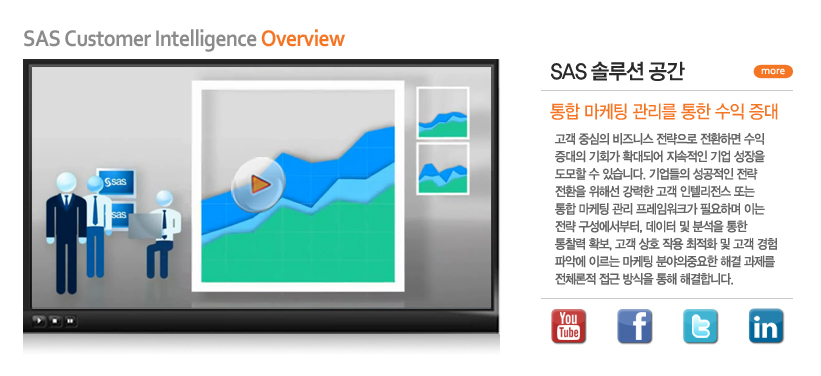 SAS Customer Intelligence Overview /  솔루션공간